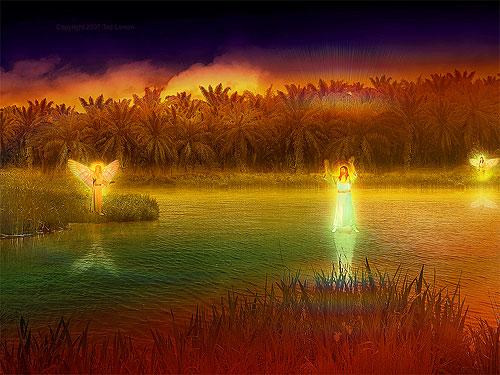 danilova-vizija-na-rijeci-tigar
