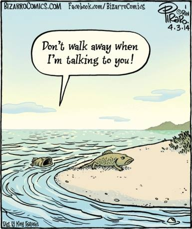 Evolucija riba